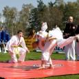 2 marca wracamy po feriach ! Jak co roku uruchamiamy dodatkowe zapisy na treningi ju-jitsu i samoobrony w Kępnie: – grupa dzieci : w każdy poniedziałek i środę od godz. […]
